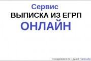 Выписка ЕГРП онлайн за 5 минут: на телефон или email