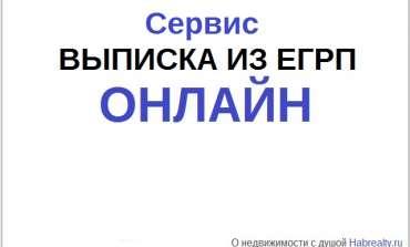 Выписка из ЕГРП онлайн 5 минут: на телефон или email