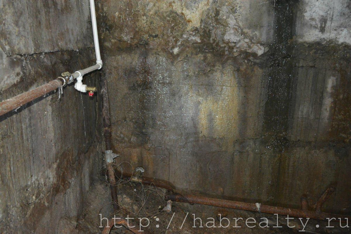сырые стены подвала УК Сервис-Центр Хабаровск