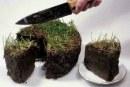 В 5 раз повысят налог на землю с неоформленными строениями