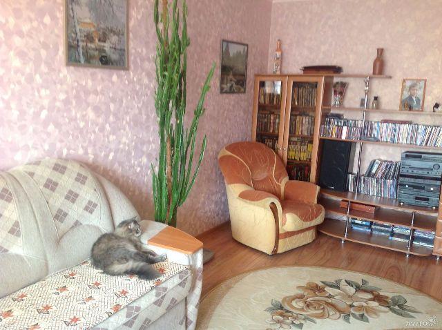 домашние животные на фотографии для продажи жилья