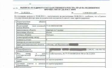 Инструкция получения выписки из ЕГРП в Регпалате