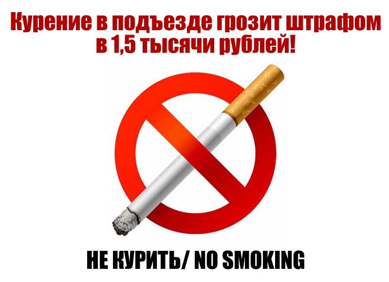 Объявления Не курить в подъезде скачать6