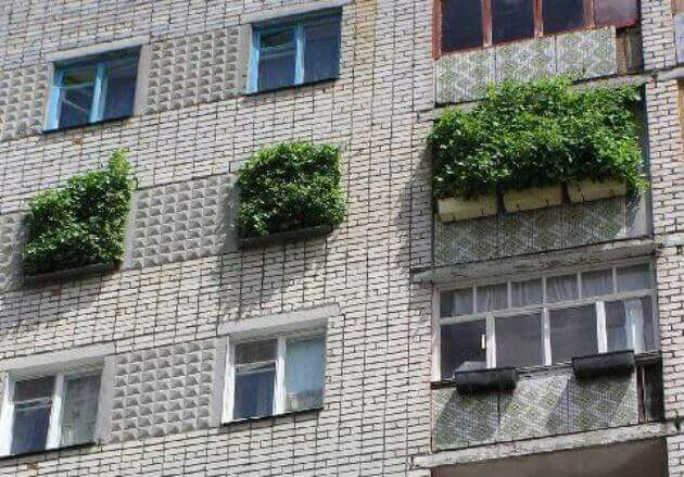 юмор про недвижимость тема фотография изображение