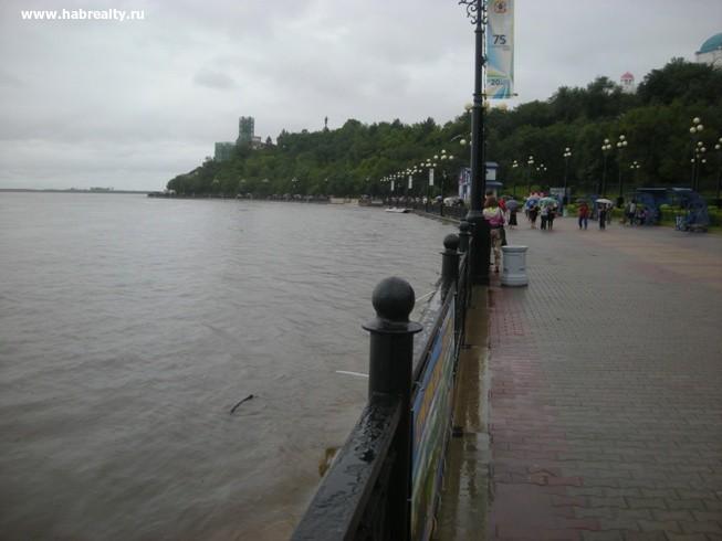 Паводок на Амуре и уровень воды2-1